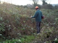 Tackle the brambles 08