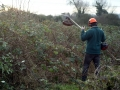 Tackle the brambles 09
