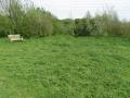 8402 - Meadow