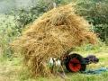 Hay Burning 2007 2