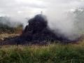 Hay Burning 2007 4