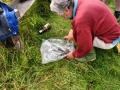 Mammal Trapping 2009 13