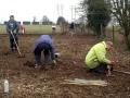 Planting Jan 2006 3