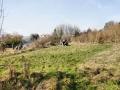 Site Views Feb 2013 1